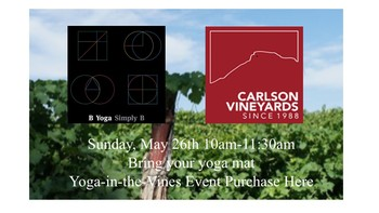 Yoga-in-the-Vines Image